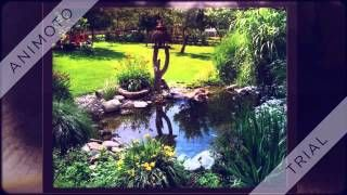 Garten Teich - YouTube