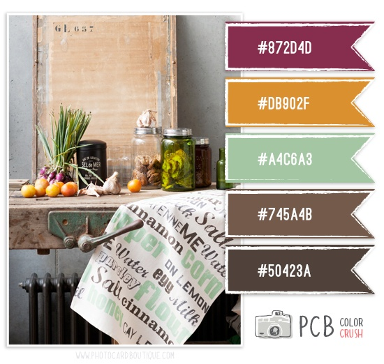 Category : Color Crush Palette | Photographer Templates by Photo Card Boutique