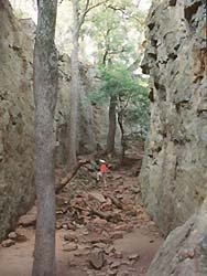 Lake Mineral Wells State Park.  Great spot for hiking, camping, and kayaking.  Park has perfect example of western crosstimbers ecosystem.  Group Dining Hall is a great place for parties and meetings.