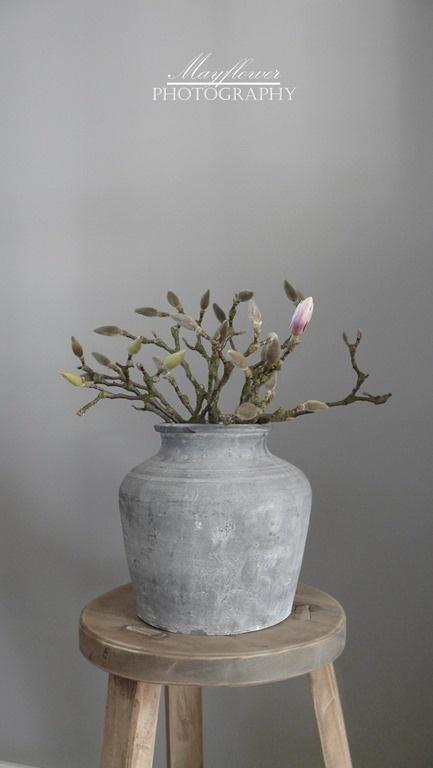 Mooie pot met magnolia takken
