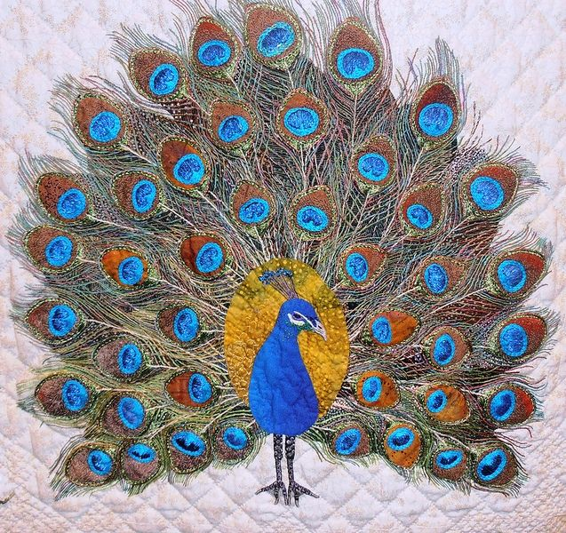 "Peacock block, ""Mi Amor"" by Margarete Heinisch, photo by Jennifer Gagliardi via Flickr"