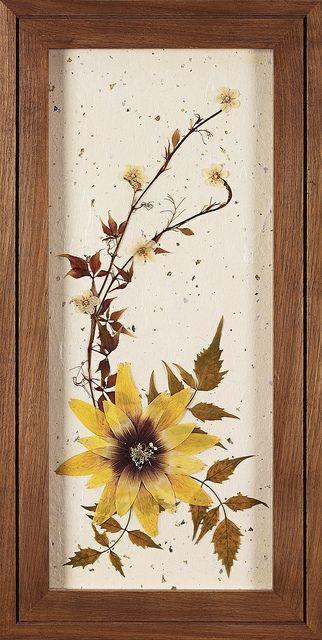 flores prensadas:
