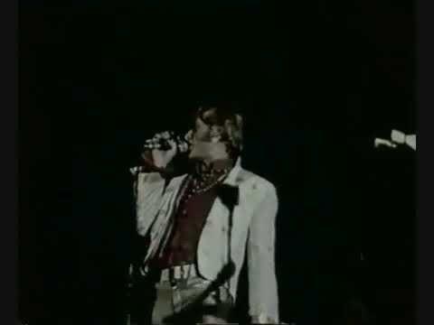 Johnny Hallyday- Hey Joe (en concert)