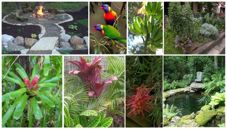 mood board for a subtropical permaculture paradise