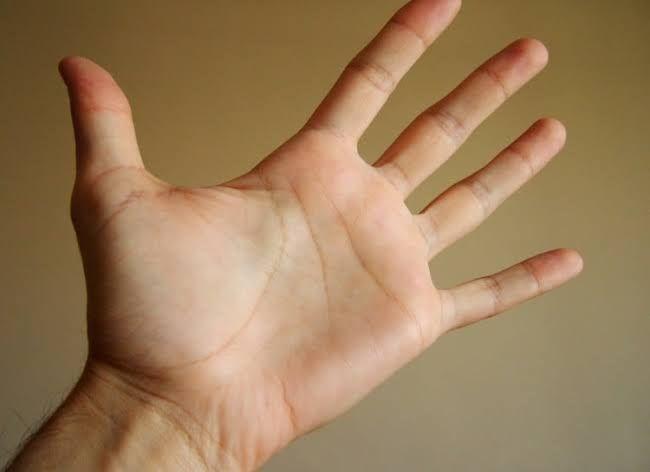 تفسير حلم اليد المتورمة أو قطع اليد اليد اليد المتورمة اليد المقطوعة اليد المقطوعة بالتفصيل Health Risks Personality Shape Of You
