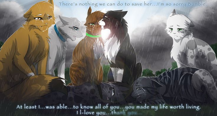 Nothing We Can Do. by RiverSpirit456 on DeviantArt