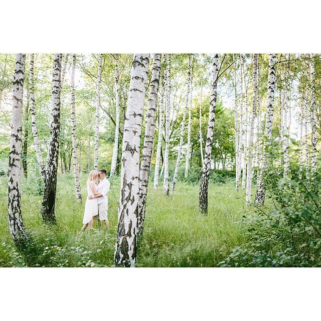 Longing for the warm summer evenings and all the green.  Nathalie+Niclas  www.oskarallerby.se  #engagement #förfoto #engagementsession #summer #green #storaholm #wedding #bröllop #allerby_photo #sweden #photo #bröllopsfoto #bröllopsfotograf #sweden #sverige #gothenburg #göteborg #brud #brudgum #bride #groom
