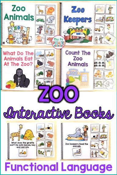 Teach students about the zoo, zoo animals and the roles of zoo keepers with these interactive books. These adapted books are perfect for building prior knowledge before a field trip to the zoo. This set is ideal for special education classrooms, self-contained programs, life skills programs, speech therapy and preschool programs.