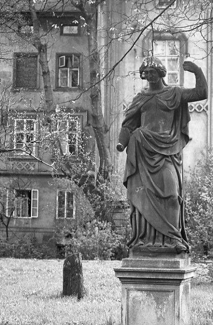 Socha a listoví (4459), Praha, duben 1966 •  black and white photograph, Prague 