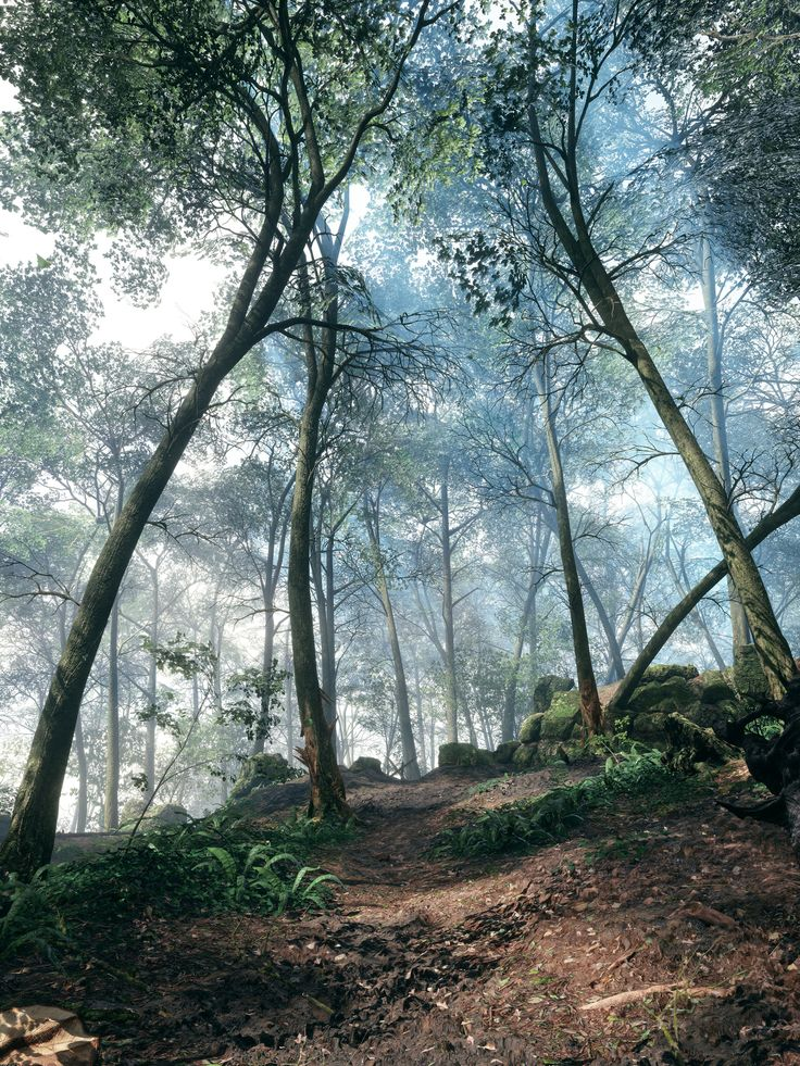 Battlefield 1 Argonne // Monte Grappa // Empire's Edge - Album on Imgur
