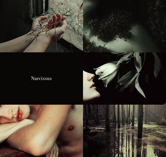 Narcissus and Echo 1/2