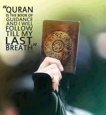 Learn to read Holy Quran Online from Qualified Quran Tutor in the comfort of your home. Visit www.alimlive.com for more information.