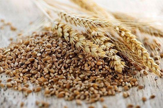 Cereali integrali per la salute del fegato  |  casadivita.despar.it