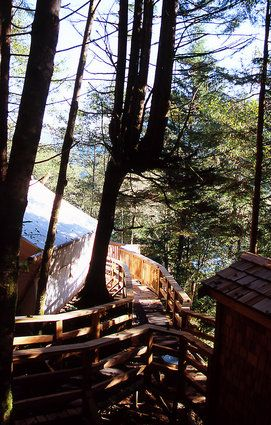 Clayoquot Wilderness Resort, B.C