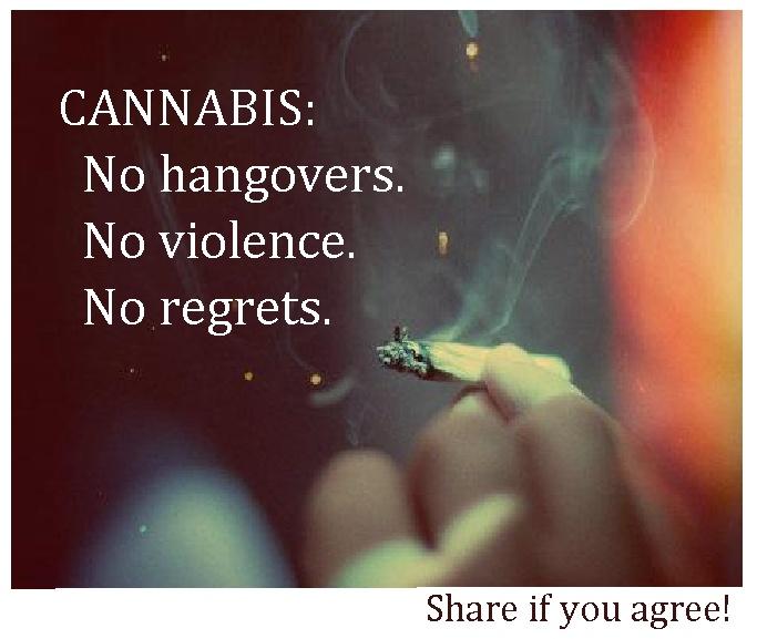 cannabis: no hangovers