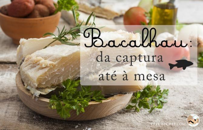 Bacalhau: da captura até à mesa