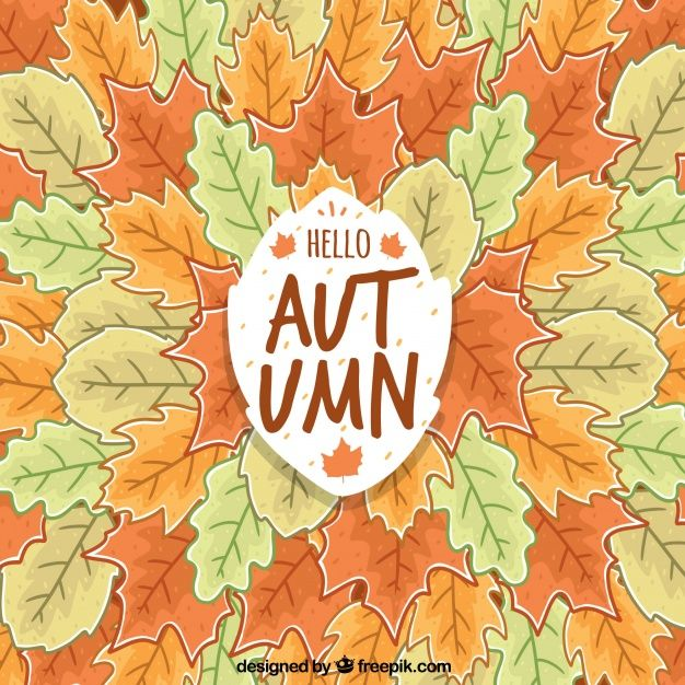Free vector Hand drawn background with composition of autumnal leaves #22559