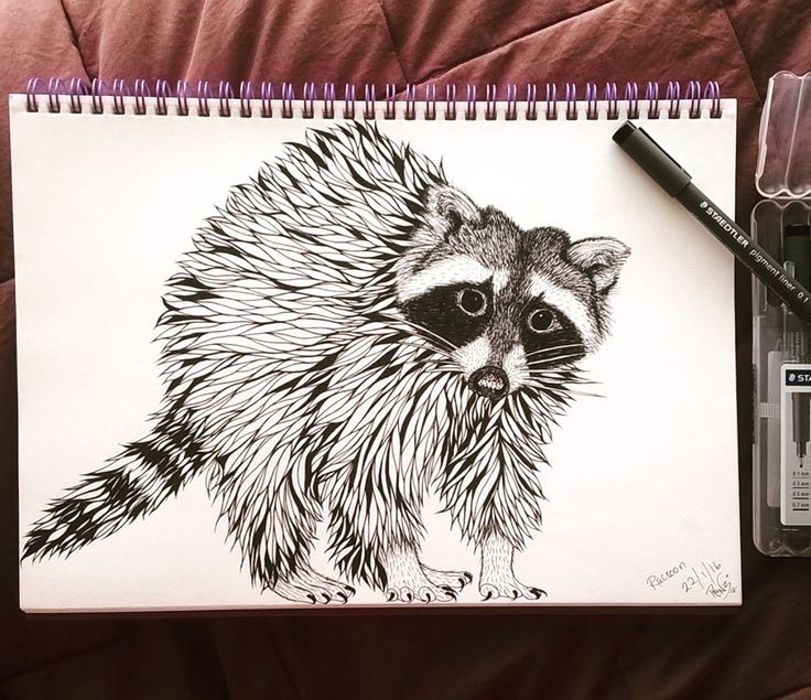 Getting some #sketchbook time  meet this cheeky little #raccoon who is #destinedtobefabric at #spoonflower  #drawing #smukdesign #monochrome #drawingismytimeout #art #blackpen #staedtler #pendrawing #blackandwhite #tdkpeepshow