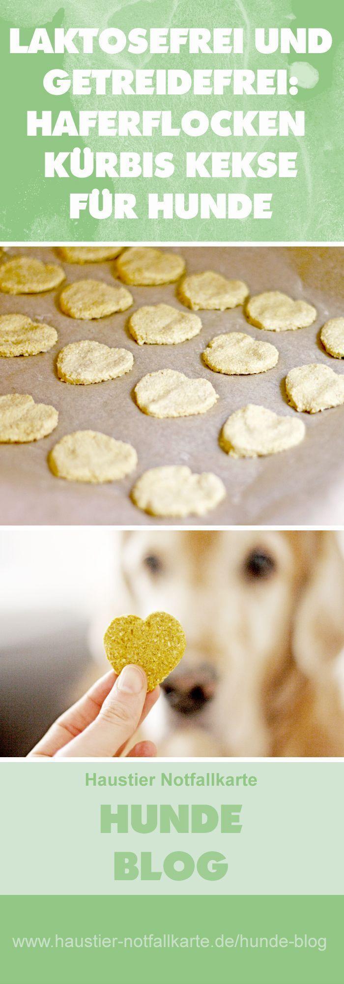 Hunde Kekse selber machen: Haferflocken Kürbis He…