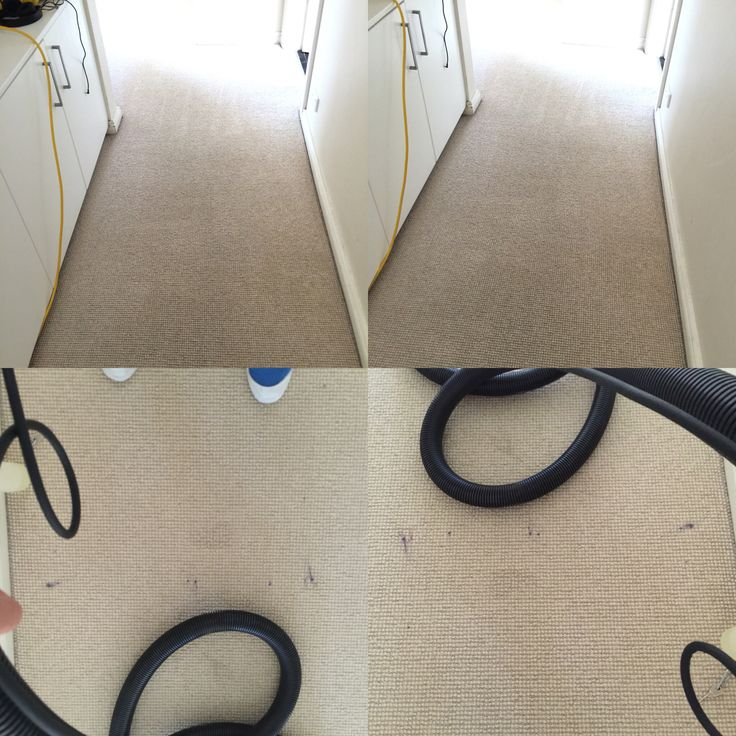 Here is a carpet I cleaned today   Purple Nail polish on beige carpet 100% it came out  The customer was very happy #carpetcleaning #stainremoval #sydney