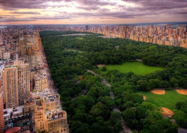 Central Park. Stunning.: Centralpark, Buckets Lists, Favorite Places, New York Cities, Beautiful Places, Central Parks, Parks Nyc, New York City, Newyork