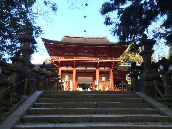 Balade vers le sanctuaire shinto Kasuga Taisha et sa forêt primaire Kasugayama - Nara Japon