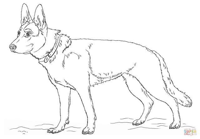 27 Exclusive Image Of German Shepherd Coloring Pages Entitlementtrap Com German Shepherd Colors Dog Coloring Page Puppy Coloring Pages