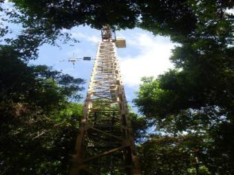Metropolitan Park Canopy Crane Tour