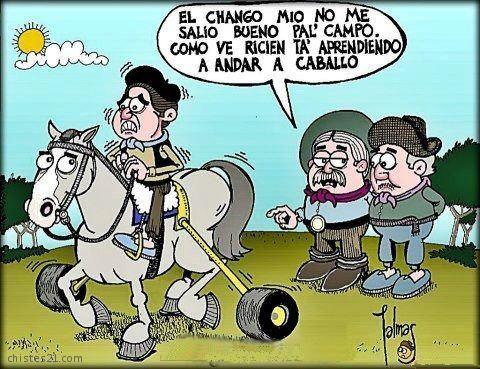 Palmas Aprenda A Andar A Caballo Humor Grafico