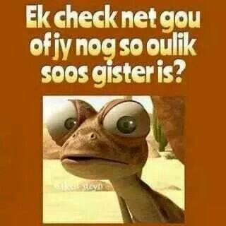 Ek check net gou
