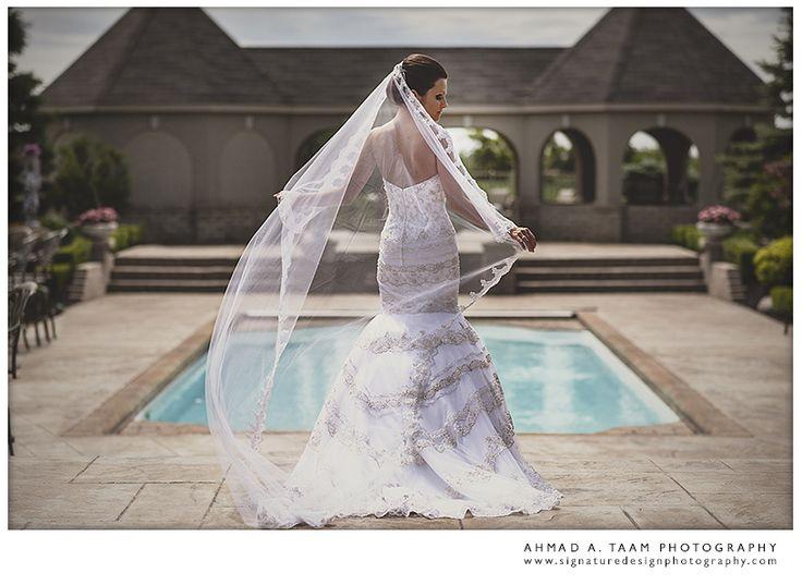 Bridal dress. bridal portrait