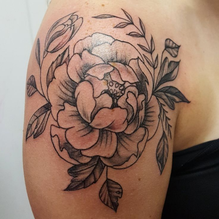 Beautiful Peonies done by Laura Carney from Richmond, VA's Kiss of Ink tattoo and Piercing studio! FOLLOW >>>>>> @lauractattoos @lauractattoos @lauractattoos  #tattoo #flower #peony #tattoo #shoulder #cap #leaves #realistic #amazing #art #doodle #sketch #artist #female #lady #tattooer #tattoo artist #feminine #pretty #free #hand