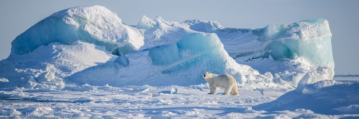 Svalbard | Jonas Beyer Photography