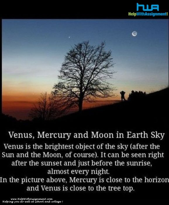 Solar system facts homework help