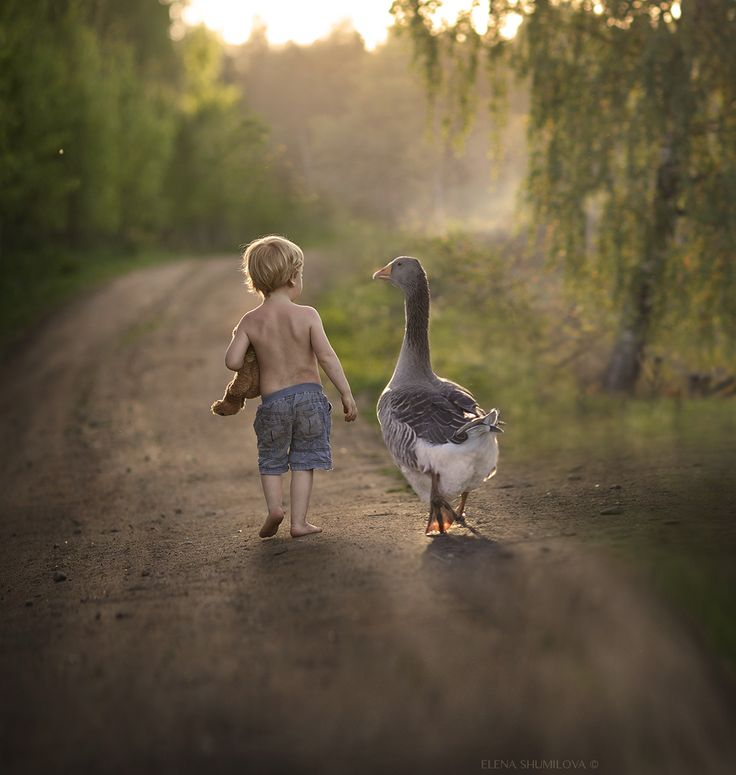 ..summer memories.. by Elena Shumilova - Photo 128510471 - 500px