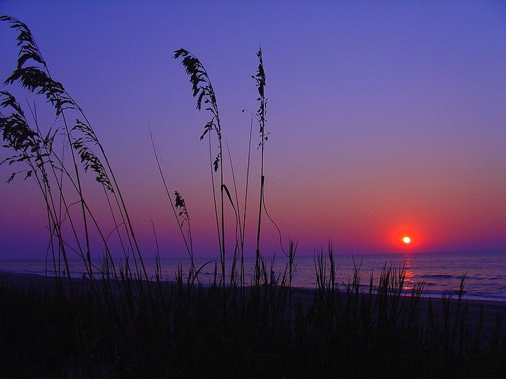 Goa Sun Set: Beaches Sunri, Favorite Places, Myrtle Beaches Sc, Beautiful, Beaches Houses, Roads Trips, Beaches Sunsets, South Carolina, North Myrtle Beaches