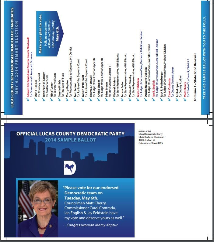 Sample ballot primary election