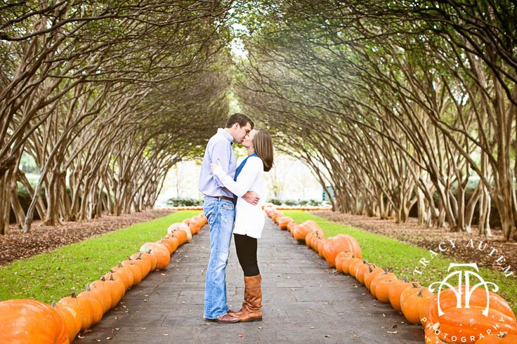pumpkin patch photo idea
