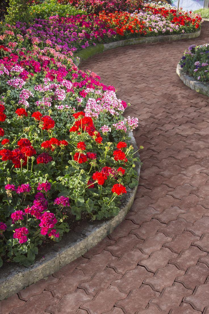 Decora tu patio, terraza y jardín con plantas y flores. Podrás crear increíbles ambientes coloridos que traerán armonía a tu hogar.