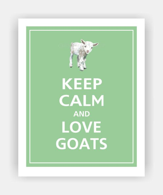 Keep Calm and LOVE GOATS Cute Baby Goat Print 8x10 (Color featured: Bonsai--over 700 colors to choose from)
