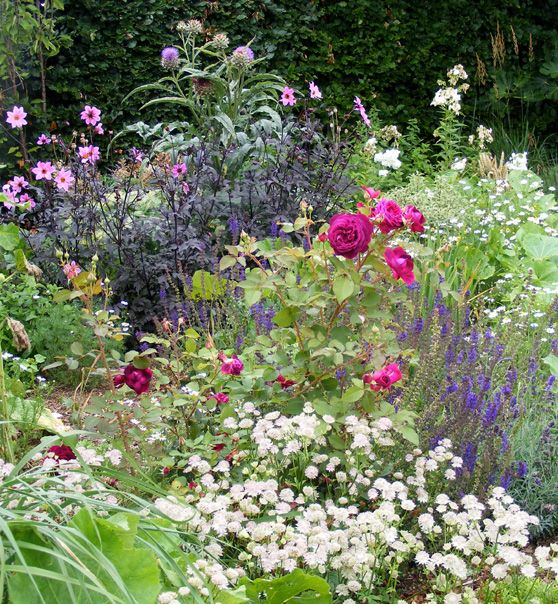 cottage garden flower bed