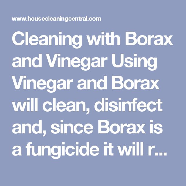 Cleaning with Borax and Vinegar    Using Vinegar and Borax will clean, disinfect and, since Borax is a fungicide it will retard mold growth.    This is a great solution to use on window frames and sills because the old metal windows sweat and that creates moisture and a breeding ground for mold. Since window replacement is a huge cost, I used this solution to keep the mold from returning until I could afford to have them upgraded.    After application, try to keep the surface as dry as…