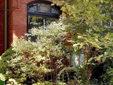 28 Best Images About Toronto Neighbourhoods On Pinterest Parks Little Italy And Ontario