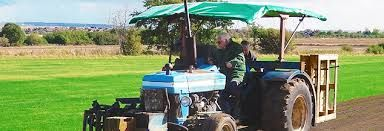 Buy premium grade turf and topsoil online from the UK leading family-run turf suppliers. Suppliers of Turf Topsoil for over 40 years in Essex. http://www.paynesturf.co.uk/trade-turf-supplies/
