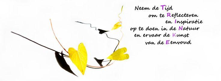 www.deverbeelder.nl