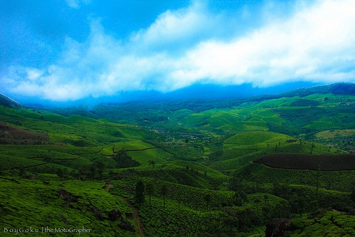 Kerala tourism; the magnificent Munnar hill station in Western Ghats
