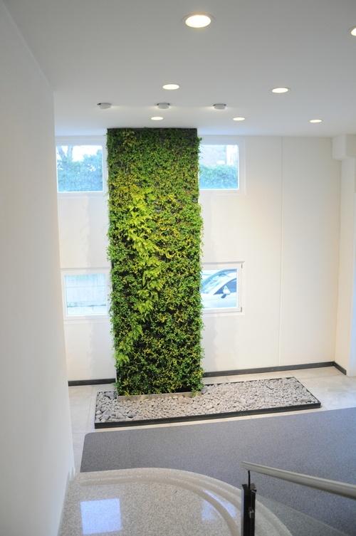 161 best vertikale begr nung indoor images on pinterest for Living walls vertical gardens