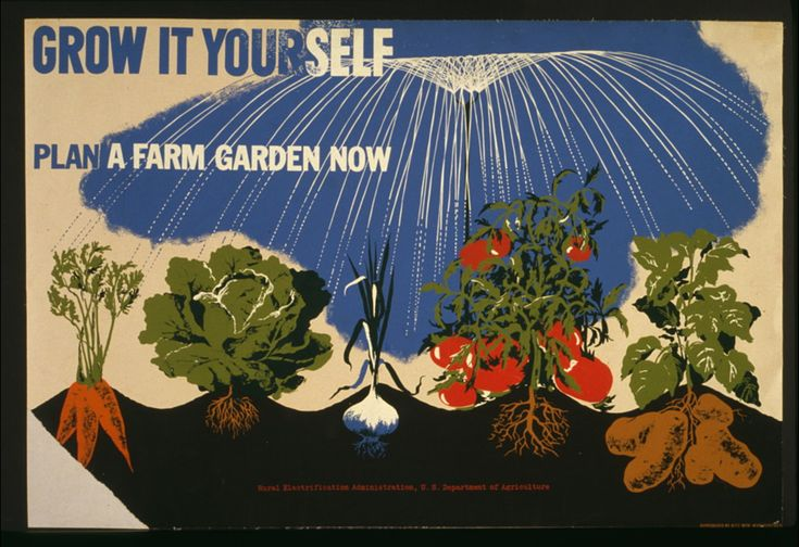 : )Vintage Posters, Farms Gardens, Picture-Black Posters, Victory Gardens, Art Posters, Growing, Vintage Gardens, Gardens Posters, Victorygarden