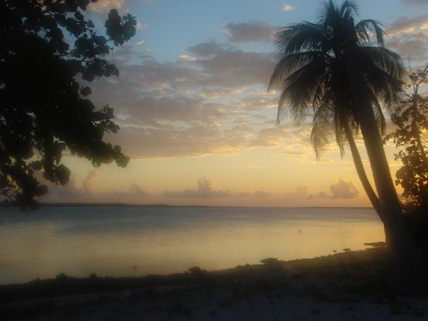 Venturing into Iguana Territory in Belize's Turneffe Atoll-A story about having trouble warming up to the locals in a Central American version of paradise.