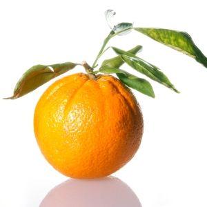 Warna Orange pada Web Desain dan Grafis, 10 warna yang mempengaruhi sales dan marketing